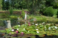 nursery-pond-2007-001.jpg