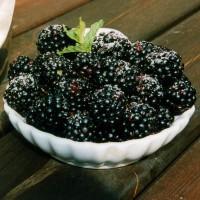sq-blackberry-black-satin-003.jpg