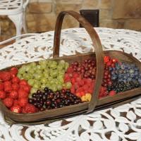 sq-fruit-basket-011.jpg