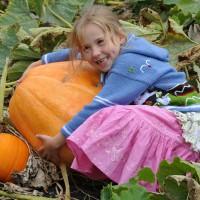 sq-pumpkin-atlantic-giant-002.jpg