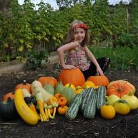 sq-pumpkins-and-squashes-009.jpg