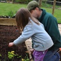 sq-sowing-herbs-004.jpg
