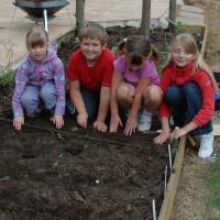 sq-sowing-seeds-5.jpg