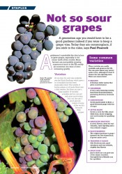 Image of the magazine article 'Not So So Sour Grapes'