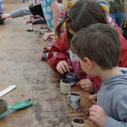 sq-edible-classroom-autumn.jpg