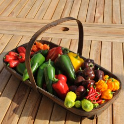 sq-veg-basket-chillies-and-peppers-004.jpg