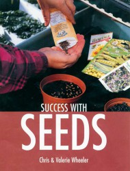 success-with-seed.jpg