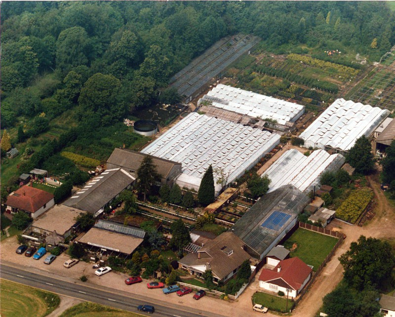 Image of an aerial view of Kent Country Nurseries