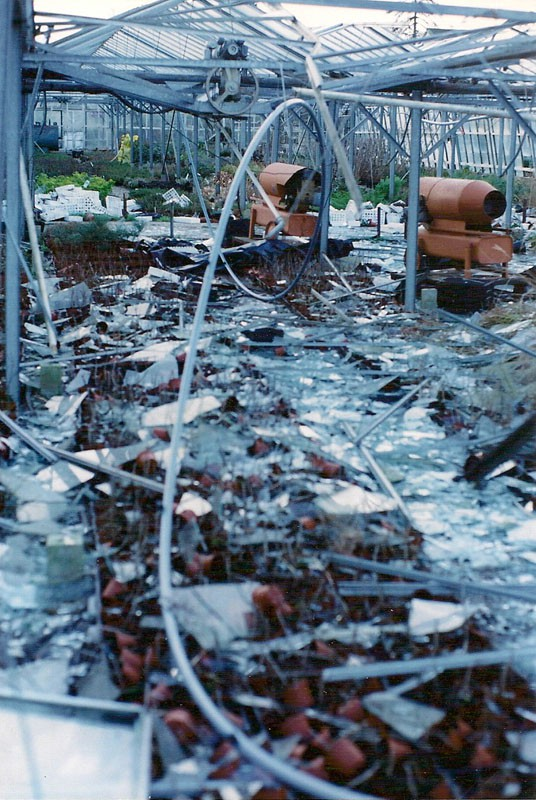 Image of damage caused by the 1991 hurricane.