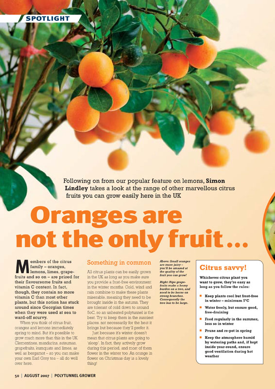 Image of the magazine article 'Oranges Are Not The Only Fruit'