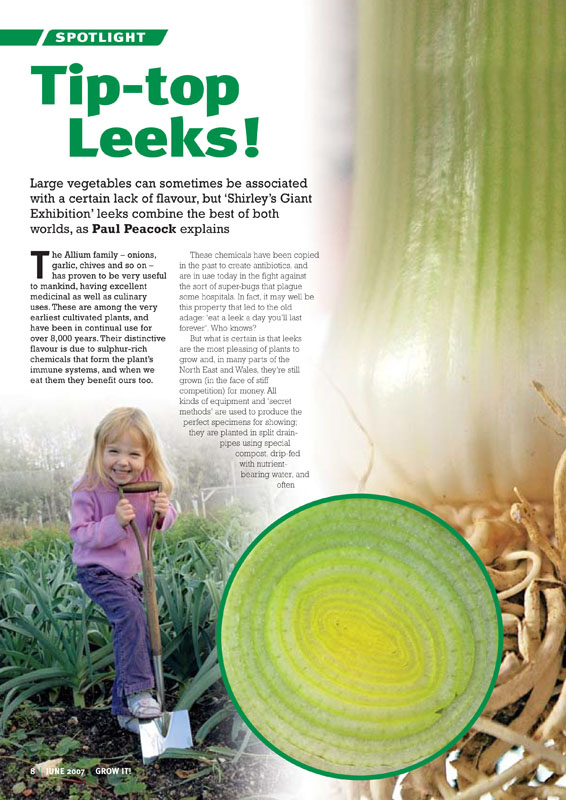 Image of the magazine article 'Tip Top Leeks'