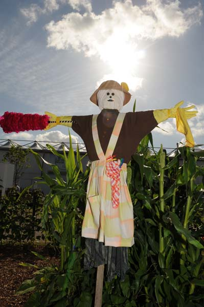 Mother Scarecrow