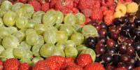 Image of mixed fruits.
