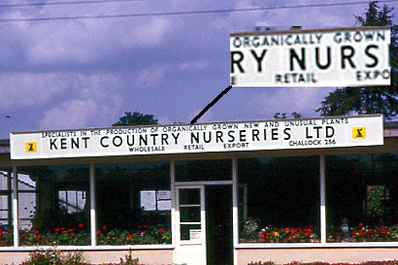 Cropped enlargement from the old Kent Country Nursery sign.